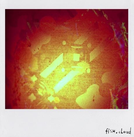 polaroid-04