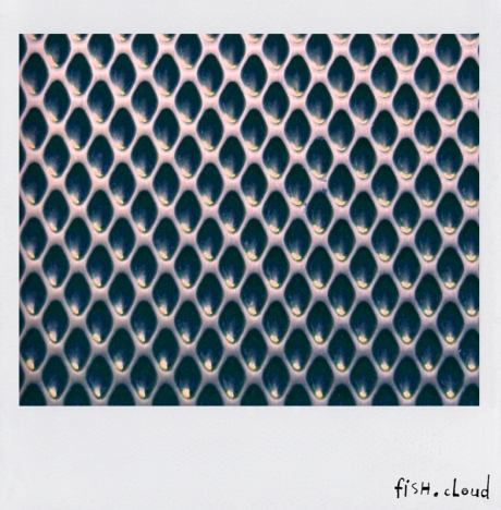 polaroid-10