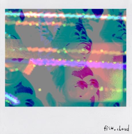 polaroid-06