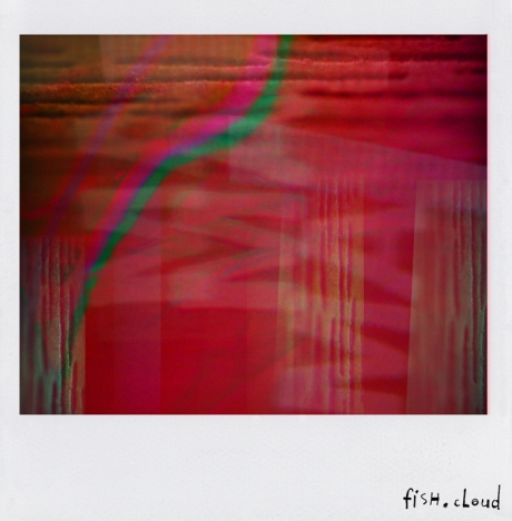 polaroid-16