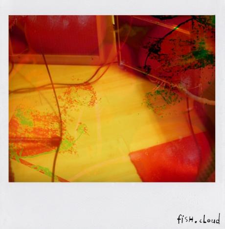 polaroid-181