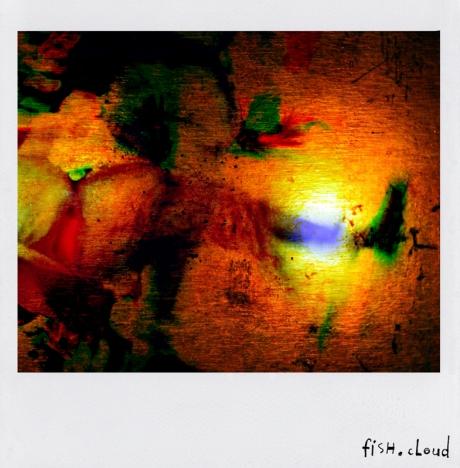 polaroid-19