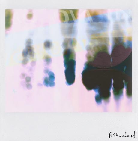 polaroid-21