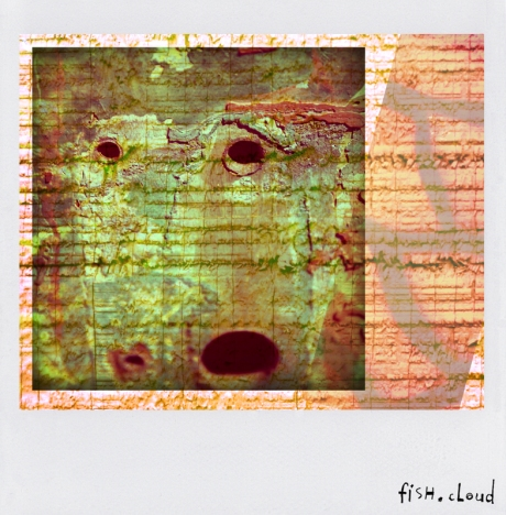 polaroid-23