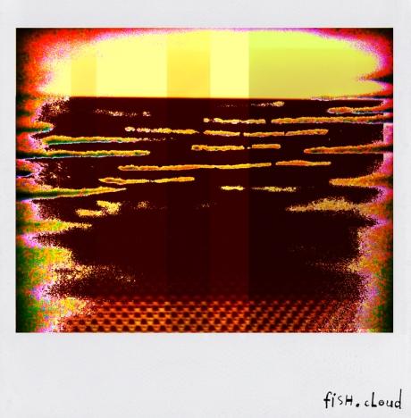 polaroid-30