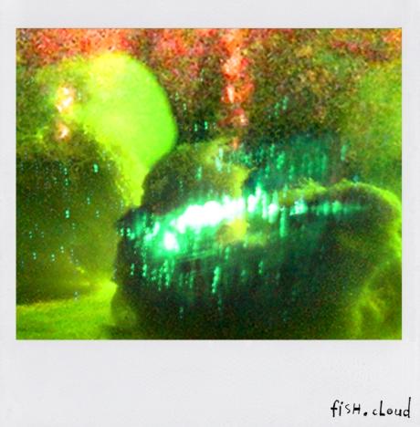 polaroid-32